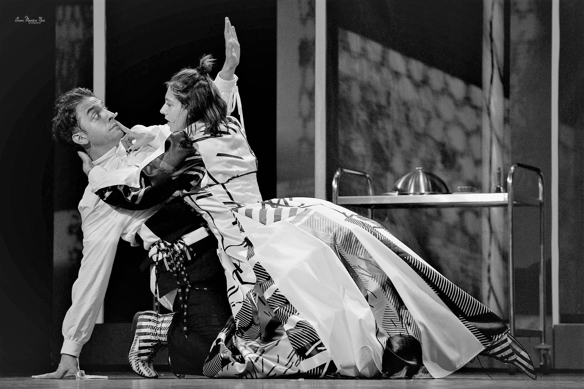 Bună seara, domnule Wilde! – Teatrul Evreiesc de Stat
